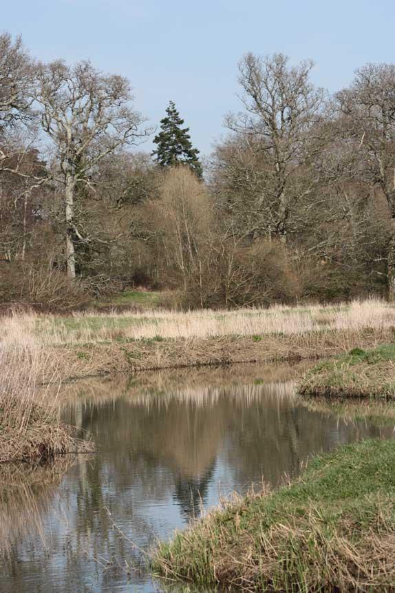 mayfield-threat-to-wineham