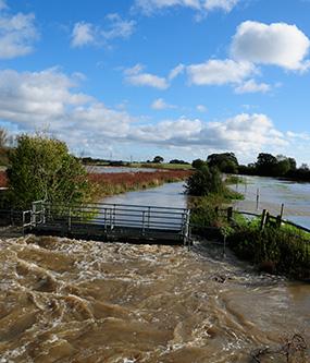 wineham_flood