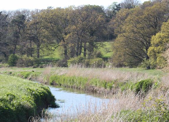 barn-owl-habitat-wineham