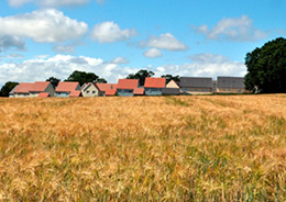 Will more land be lost to housing? Mid Sussex Times